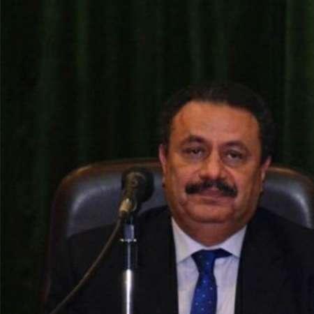 رضا عبد القادر رئيس مصلحة الضرائب المصرية