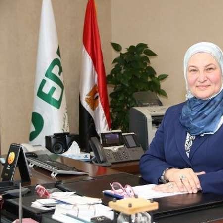 ميرفت سلطان، رئيس البنك المصري لتنمية الصادرات
